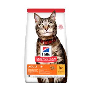 hills piletina mačke