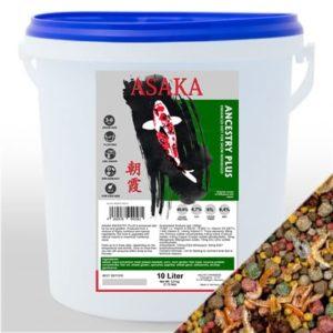Asaka Ancestry plus hrana za koi šarane