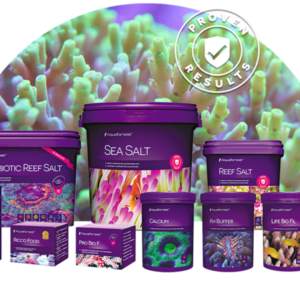 Morska akvaristika