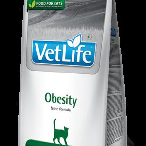 vet-life-feline-obesity-mačke
