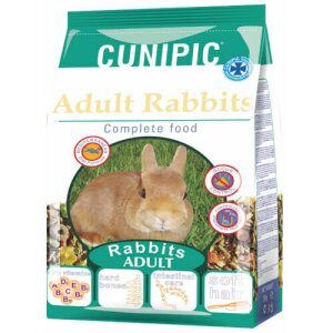 cunipc adult rabbit