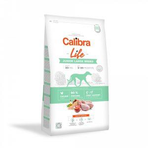 calibra life junior large piletina